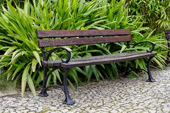 Awesome vintage bench in botanical garden in Europe in summer. Awesome vintage bench in botanical garden in Europe in summer royalty free stock image