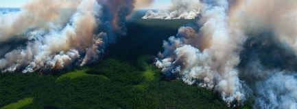 Forest fire, top view Royalty Free Stock Photo