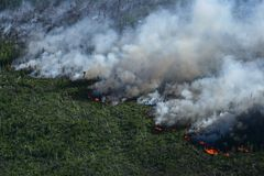 Forest fire, top view. Awful wildfire from the bird`s eye view Royalty Free Stock Photography