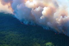 Forest fire, top view. Awful wildfire from the bird`s eye view Stock Photos