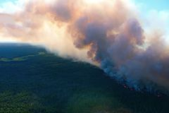 Forest fire, top view. Awful wildfire from the bird`s eye view Stock Images