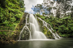 Awharoa Falls Stock Photo