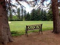 Ławka i park w lato czasie Fotografia Royalty Free