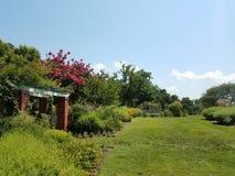 Ławka i trawa w kwiatu ogródzie Zdjęcie Royalty Free