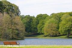 Ławka, jezioro i warkocz, obraz royalty free