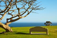 Ławka na wzgórzu blisko oceanu Fotografia Royalty Free