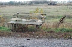 Ławka obok drogi Zdjęcie Royalty Free