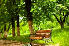 ławka park Zdjęcia Royalty Free