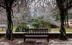 Ławka pod drzewem Fotografia Royalty Free