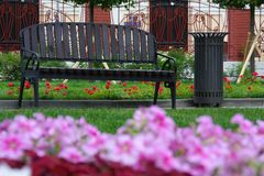 Ławka w ogródzie Zdjęcia Stock