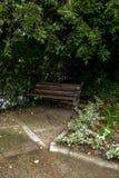 Ławka w ogródzie botanicznym Zdjęcia Royalty Free