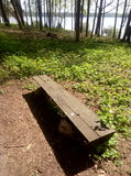 Ławka w parku Fotografia Stock