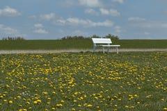 Ławka w polu Obraz Stock
