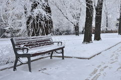 Ławka w zima parku Fotografia Stock