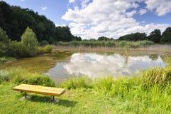 ławki jezioro Zdjęcie Royalty Free