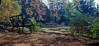 ławki parku Obraz Royalty Free