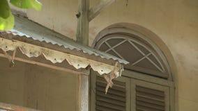 Awning και το παράθυρο ενός σπιτιού κλασσικός-ύφους απόθεμα βίντεο