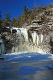 awosting falls fryst lakevertical Royaltyfri Fotografi
