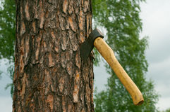 An ax and chopped wood Stock Photography