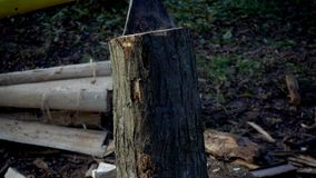 The ax cuts a stump close up of a slow motion. Wood cutting slows motion. The ax cuts a stump close up of a slow motion stock video
