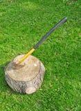ax gazonu fiszorka pogodny drewno Zdjęcie Royalty Free