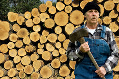 Ax man and log pile Stock Photography