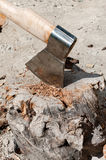 The ax in the pine log. Royalty Free Stock Image