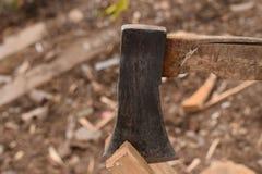 ax stary Obraz Stock