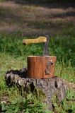 Ax sticking out of the stump Royalty Free Stock Photos