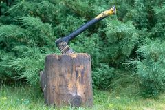 The ax is stuck in a log on a background of a juniper stock photo