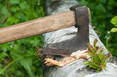 Ax stuck in tree. Ax embedded in fallen tree in the forest stock photos