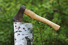 Axe in Birch log Stock Images