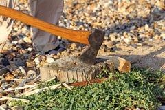 Axe blade on tree stump. Photo of an axe blade stuck in tree stump on a kent beach royalty free stock photos
