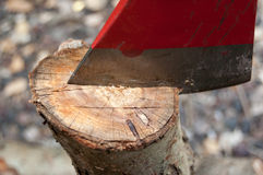 Axe blade and trunk Stock Images