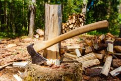 Axe and chopped logs in forest stock photo