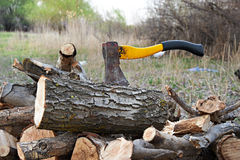 Axe with chopped wood Stock Image