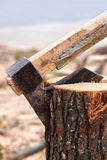 Axe chopping log Stock Image