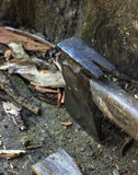 Axe cut wood Stock Photo