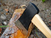 Axe in firewood. Axe blade chopping firewood Stock Photo