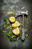 Axe with lemon and leaves on a stone stand. Royalty Free Stock Photography