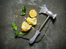 Axe with lemon and leaves on a stone stand. Royalty Free Stock Photos