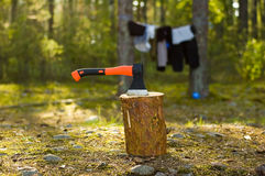 Axe and log Royalty Free Stock Photo