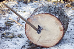 Axe and log isolated in nature Royalty Free Stock Image