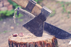 Axe and machete carved in stump in courtyard. Ax and machete driven into the wood timber in the yard Stock Photos