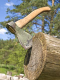 Axe in nature Stock Photography