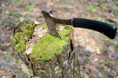 Axe in an old stump Stock Photography
