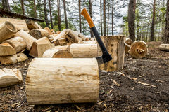 Axe in polene amid piles of logs in the forest Stock Photo
