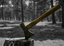 The axe. The only remaining deforestation color axen Royalty Free Stock Photography