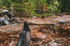 The axe stuck. Axe and wood. A sun bleached axe stuck in a block of wood. The axe stuck in a log on the background of green forest royalty free stock images