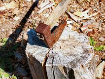 Axe stuck in wood Royalty Free Stock Photo